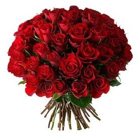 Konya çiçek online çiçek siparişi  33 adet kırmızı gül buketi