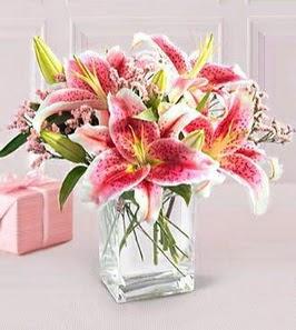 2 dal kazablanka görsel vazosu  Konya güvenli kaliteli hızlı çiçek