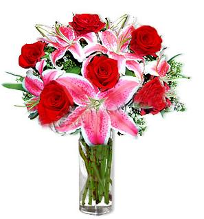 Konya uluslararası çiçek gönderme  1 dal cazablanca ve 6 kırmızı gül çiçeği