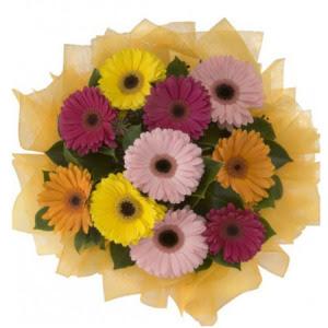 Konya cicek , cicekci  11 adet karışık gerbera çiçeği buketi