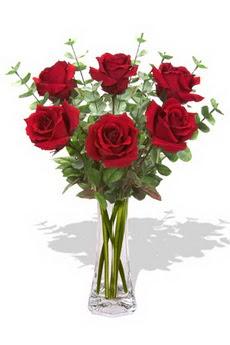 Konya kaliteli taze ve ucuz çiçekler  6 kırmızı gül vazosu