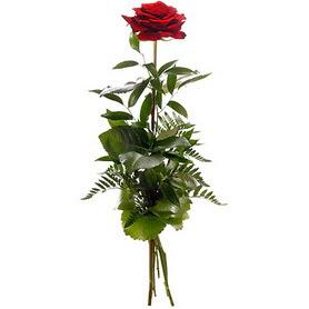 Konya çiçek siparişi vermek  1 adet kırmızı gülden buket