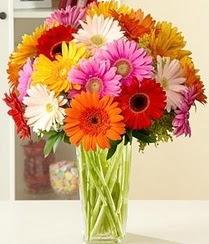 Konya çiçekçi mağazası  15 adet gerbera çiçek vazosu