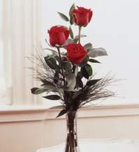 Konya yurtiçi ve yurtdışı çiçek siparişi  Vazoda 3 adet güzel gül
