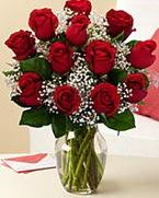 Sevgilime hediye 9 adet 1.ci kalite gül  Konya çiçek , çiçekçi , çiçekçilik