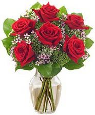 Kız arkadaşıma hediye 6 kırmızı gül  Konya çiçek yolla , çiçek gönder , çiçekçi