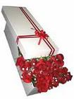 Konya anneler günü çiçek yolla  11 adet 1.kalite magnum güller