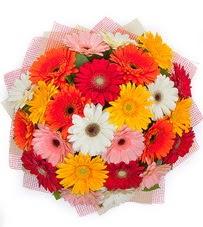 15 adet renkli gerbera buketi  Konya internetten çiçek siparişi