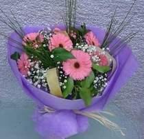 Konya cicekciler , cicek siparisi  9 adet gerbera güzel çiçegi