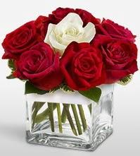 Tek aşkımsın çiçeği 8 kırmızı 1 beyaz gül  Konya çiçekçi telefonları