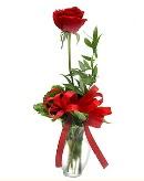 vazo içerisinde 1 adet kırmızı gül  Konya anneler günü çiçek yolla
