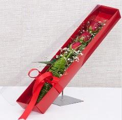 Kutu içerisinde 3 adet kırmızı gül  Konya çiçek gönderme sitemiz güvenlidir