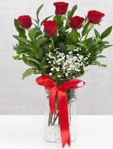 cam vazo içerisinde 5 adet kırmızı gül  Konya çiçek gönderme