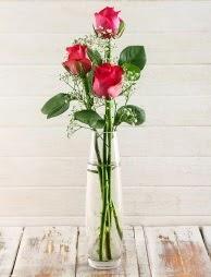 Cam içerisinde 3 kırmızı gül  Konya hediye sevgilime hediye çiçek