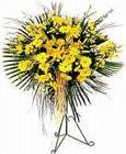Konya internetten çiçek siparişi  Sari kazablanka Ferforje