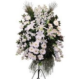 Konya çiçek yolla  Ferforje beyaz renkli kazablanka
