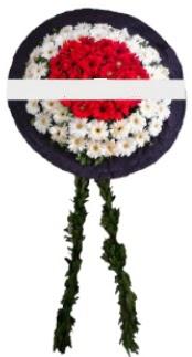 mozele çiçeği  Konya ucuz çiçek gönder
