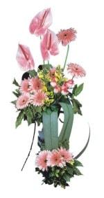 Konya çiçekçiler  Pembe Antoryum Harikalar Rüyasi