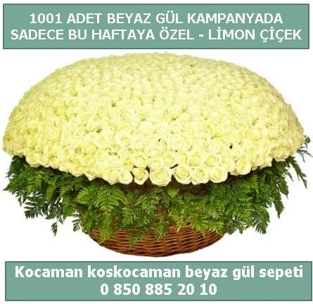 1001 adet beyaz gül sepeti özel kampanyada  Konya cicekciler , cicek siparisi