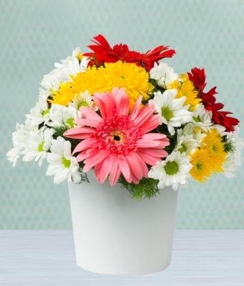 Seramik Vazoda Gelbera ve Papatya  Konya 14 şubat sevgililer günü çiçek