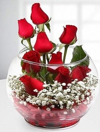 Kırmızı Mutluluk fanusta 9 kırmızı gül  Konya güvenli kaliteli hızlı çiçek