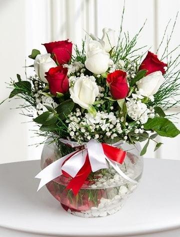 Aşk Küresi  5 beyaz 5 kırmızı gül fanusta  Konya yurtiçi ve yurtdışı çiçek siparişi