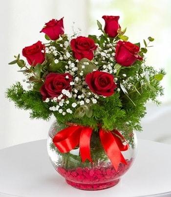 fanus Vazoda 7 Gül  Konya çiçek online çiçek siparişi