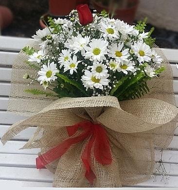 Papatya 1 adet kırmızı gül buketi  Konya online çiçekçi , çiçek siparişi