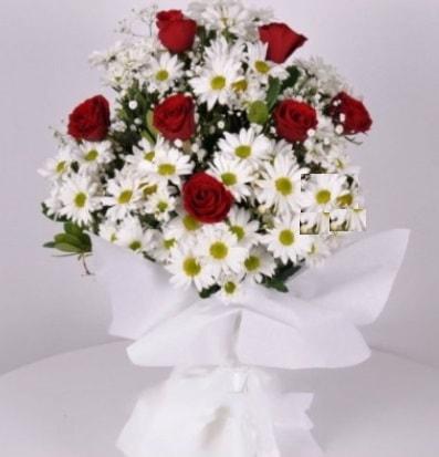 7 adet kırmızı gül ve papatyalar krizantem  Konya yurtiçi ve yurtdışı çiçek siparişi