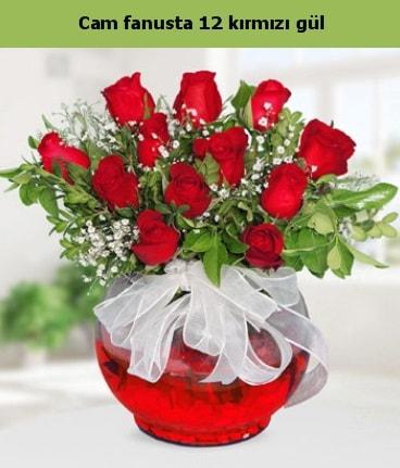 Cam içerisinde 12 adet kırmızı gül  Konya yurtiçi ve yurtdışı çiçek siparişi