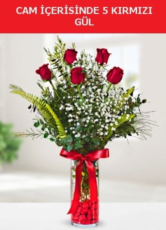 Cam içerisinde 5 adet kırmızı gül  Konya güvenli kaliteli hızlı çiçek