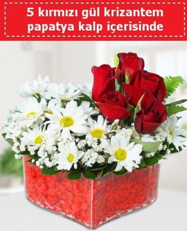 mika kalp içerisinde 5 kırmızı gül papatya  Konya 14 şubat sevgililer günü çiçek