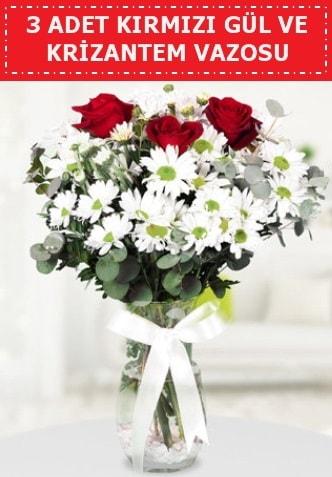 3 kırmızı gül ve camda krizantem çiçekleri  Konya 14 şubat sevgililer günü çiçek