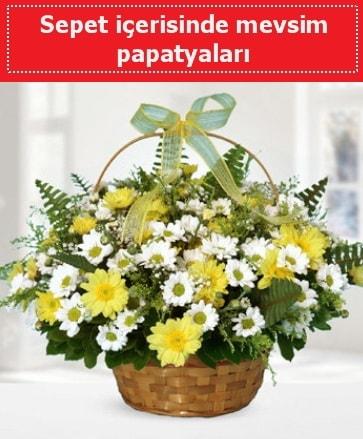 Sepet içerisinde mevsim papatyaları  Konya çiçek servisi , çiçekçi adresleri