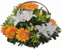 Konya çiçek siparişi vermek  sepet modeli Gerbera kazablanka sepet
